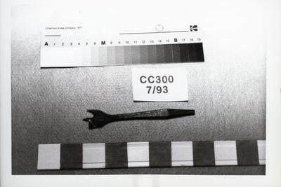 ccccp300-large.jpg